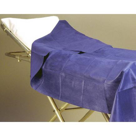Patient Privacy Sheet, Dark Blue, 40in x 84in